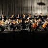 orchester1_web